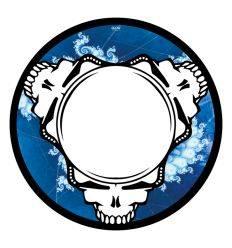 GLOWTRONICS DENON 3700 DEAD HEADS