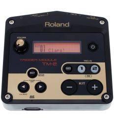 ROLAND TM-2 características precio