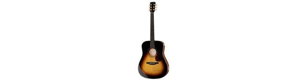Guitarras acústicas y electroacústicas